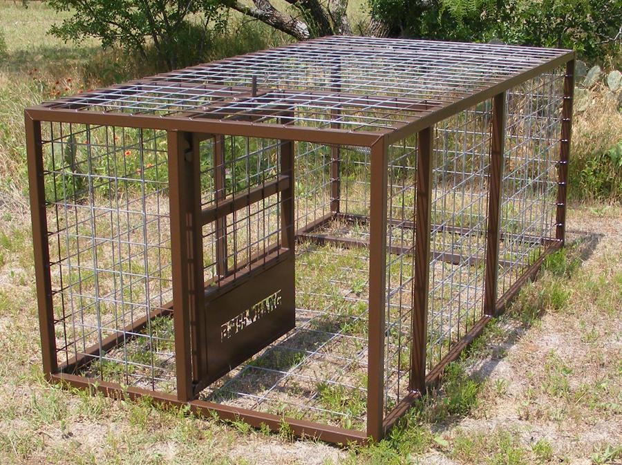 Hog Trap Door Our Standard Boss Hawg Hog